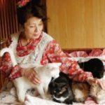 長嶺ヤス子の猫好きはハンパない!仕事をして稼ぐその理由とは?